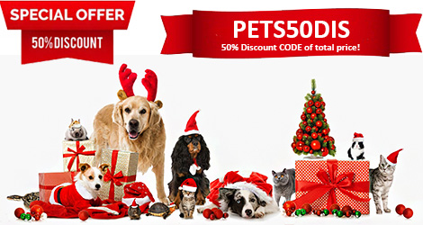 50% Discount of total price!  Valid to 2020-12-31!